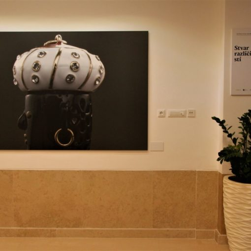 Izložba fotografija Morčića u Galeriji Plavi salon