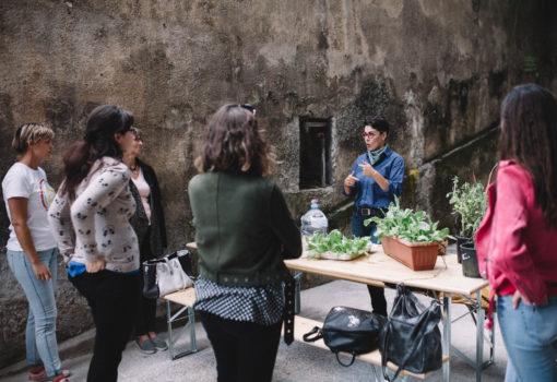 Zelena subota u RiHubu – seed bombs radionica i razmjena sjemena