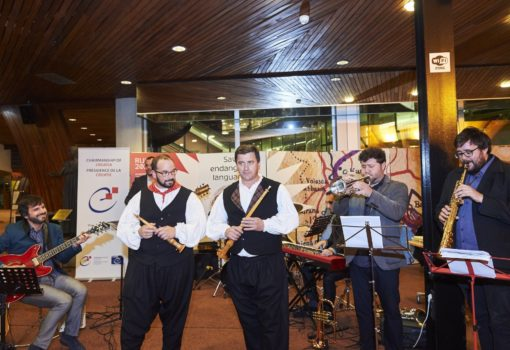A Musical Evening in the Vrbnik Neighbourhood with Fare-Free Transport from Rijeka