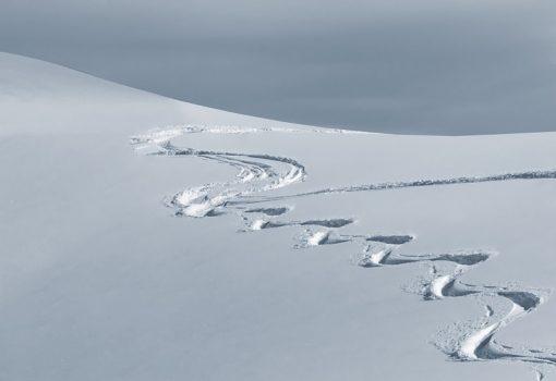 Brickzinalije #6: Nos na prozoru, snijeg na obzoru