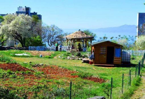 Nova Zelena radionica uči nas o kućnom kompostiranju