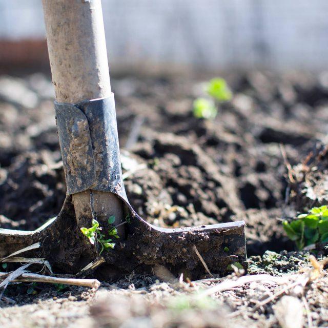 Sjemenske kupke i prirodna gnojiva na Zelenoj radionici u RiHubu