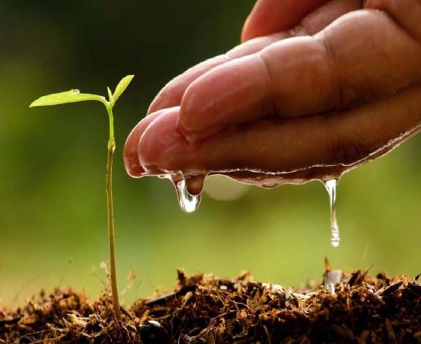 [Radionica] Preparati holističke poljoprivrede za kvalitetniju hranu i zdravije tlo
