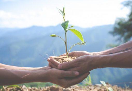 Sajam i razmjena sjemena uz razgovor o uzgoju biljaka i prirodnom poljodjelstvu