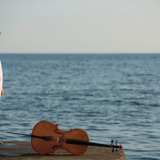 Call out for cellists | Cellissimo International Student Programme 2020