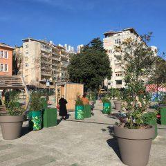 Klobučarićev trg ima nove žardinjere s biljem, a Stari grad nov mini park